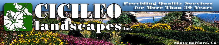 Cicileo Landscapes, Inc.